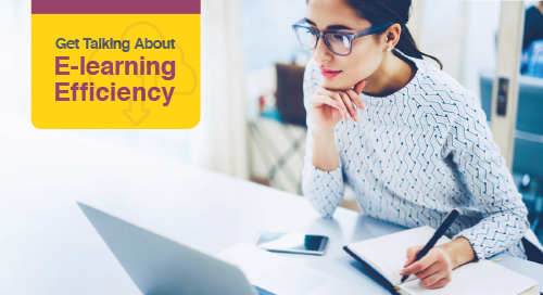 The e-Learning Efficiency Guide for Business - A Snapshot